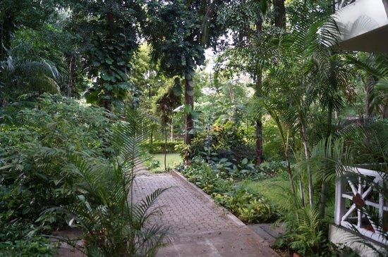 Taj West End : Beautiful grounds