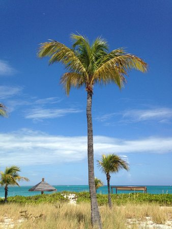 Club Med Turkoise, Turks & Caicos: You must visit!