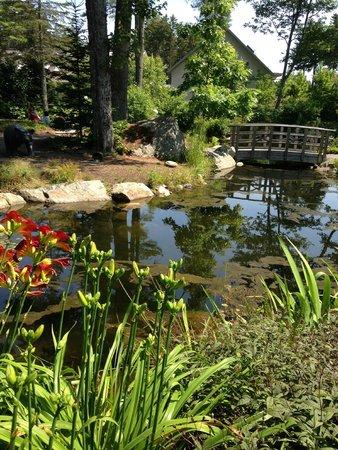 Coastal Maine Botanical Gardens: beauty in Maine Botanical Gardens