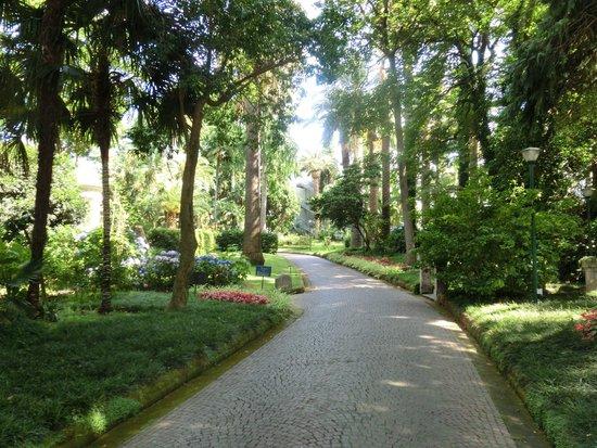 Hotel La Residenza: Парк