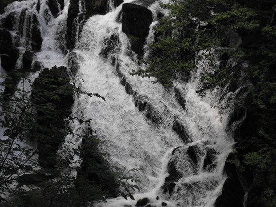 Swallow Falls (Rhaeadr Ewynnol) : Swallow Falls