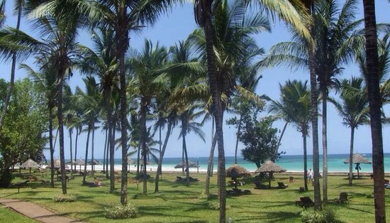 Neptune Paradise Beach Resort & Spa: Garden of hotel with palm trees, white sand