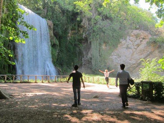 Parque Natural del Monasterio de Piedra: Waterfall