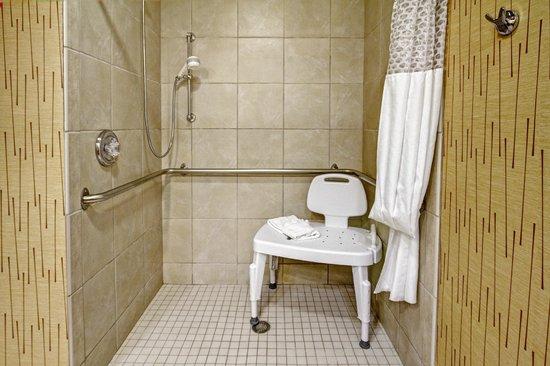 Hampton Inn Pittsburgh/West Mifflin : Roll-in Shower
