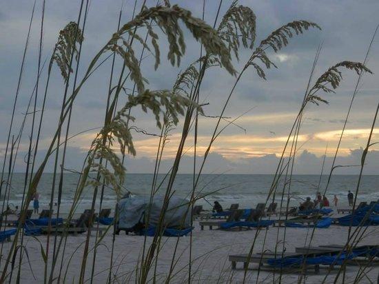 Grand Plaza Beachfront Resort Hotel & Conference Center: Baach