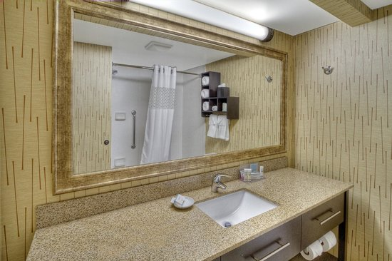 Hampton Inn Pittsburgh/West Mifflin : Guest Bathroom