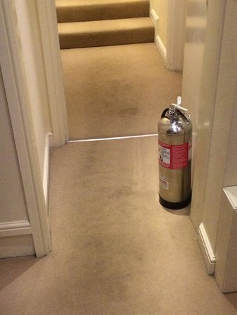 Smart and Simple Hotel: Stained corridor carpet
