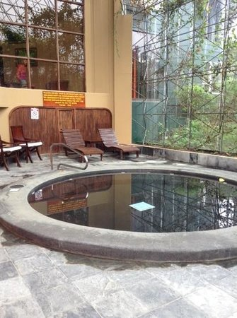 Monteverde Lodge & Gardens: This is the pool.  It is not very big, but you can not have everything.