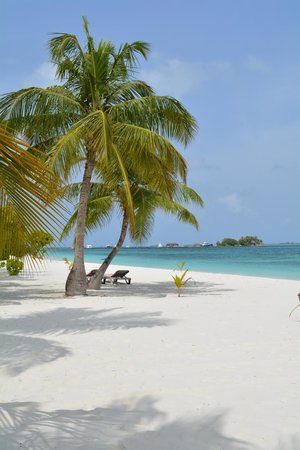 Kuredu Island Resort & Spa: beach