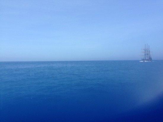 Cabo Adventures : Pacific Ocean