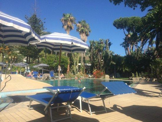 Park Hotel Terme Mediterraneo: Poll im Tageslicht 1