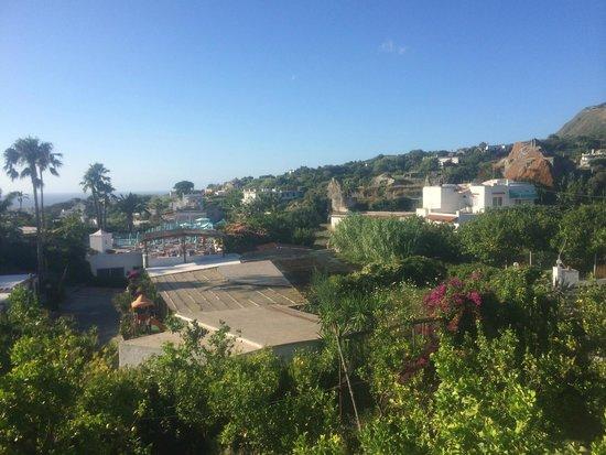 Park Hotel Terme Mediterraneo: Aussicht vom Hotelgelände 1