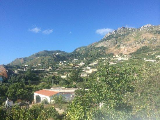 Park Hotel Terme Mediterraneo: Aussicht vom Hotelgelände 2