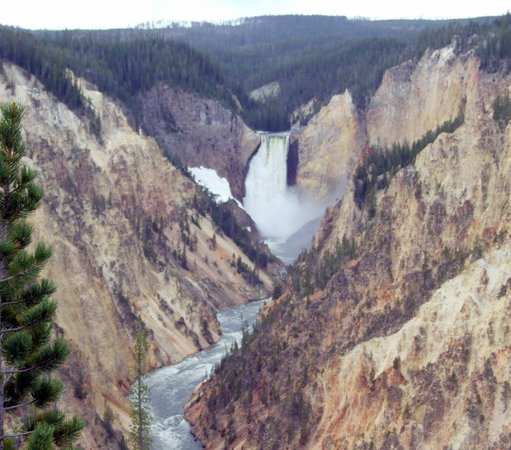 Flat Creek Inn: Yellowstone