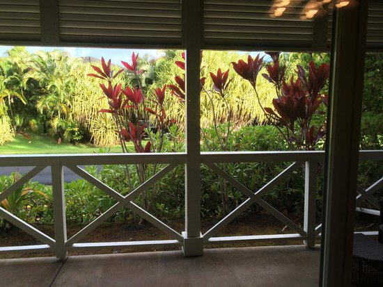 Nihilani at Princeville: Patio pic taken from dining room