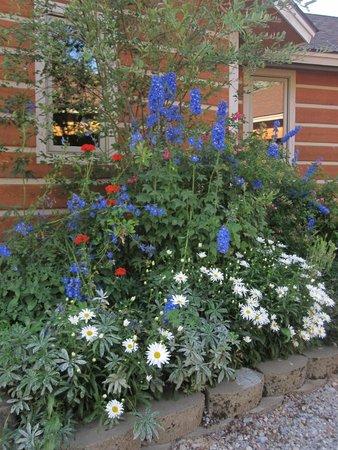 Fox Creek Inn: colorful flowers