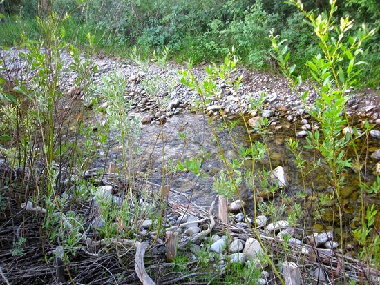 Fox Creek Inn: babbling stream