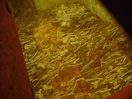 Igreja de Sao Francisco: Les ossements