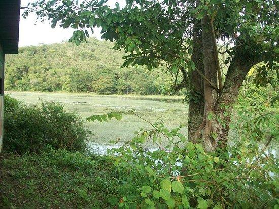 REGUA - Reserva Ecologica de Guapiacu: lago
