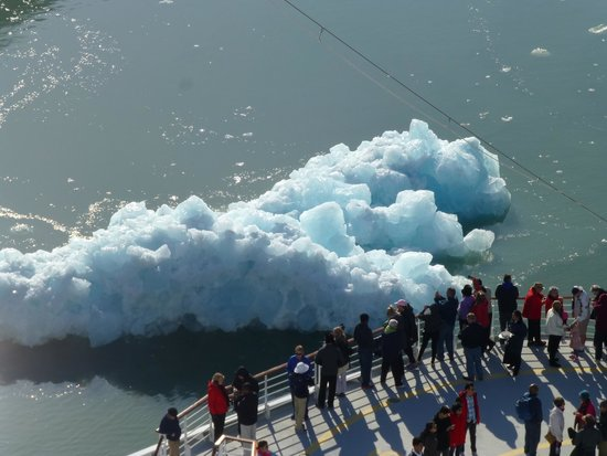 Tracy Arm Fjord: Just floating by