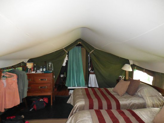 Entim Camp: Interior of tent