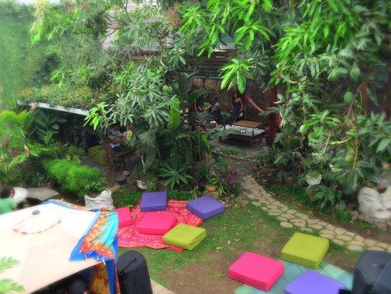 Hostel Mangifera: Nature