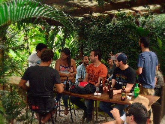 Hostel Mangifera: Ambiente
