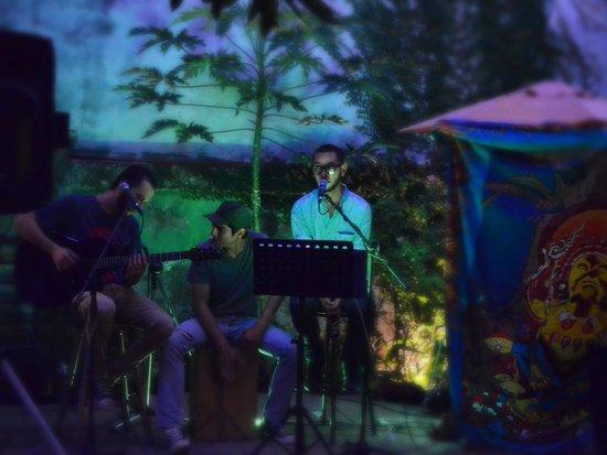 Hostel Mangifera: Musica