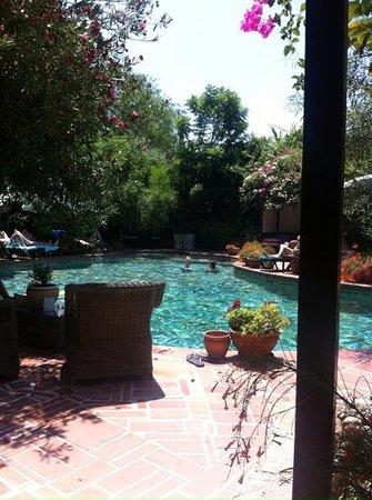 El Vino Hotel & Suites : pool