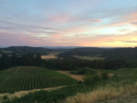 Youngberg Hill Vineyards & Inn: View from the wraparound deck