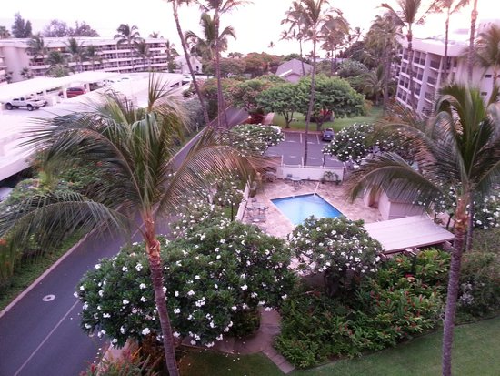Kihei Akahi: Swimming pool!