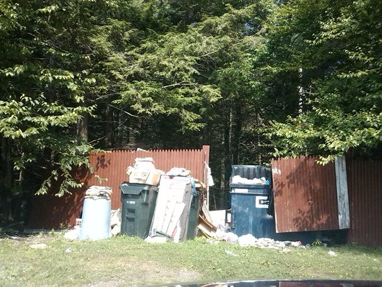Budget Host Killington Lodge: dumpster area. No wonder they have bear warning signs posted in the hotel