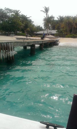Palm Island Resort & Spa : Arriving at the jetty