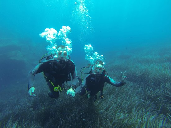 Aegean Divers Dive Center - Day Excursions: A cracking day diving