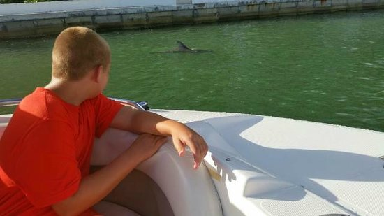 Sea Shell Boat Tours: My son has great memories!