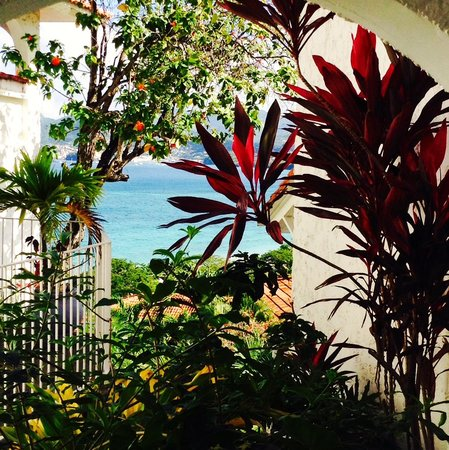 Mount Cinnamon Resort & Beach Club : The gardens