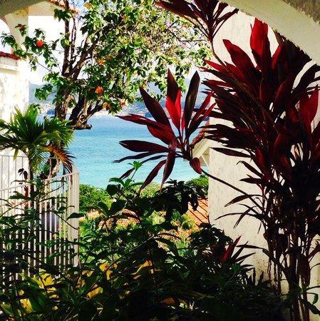 Mount Cinnamon Resort & Beach Club: The gardens