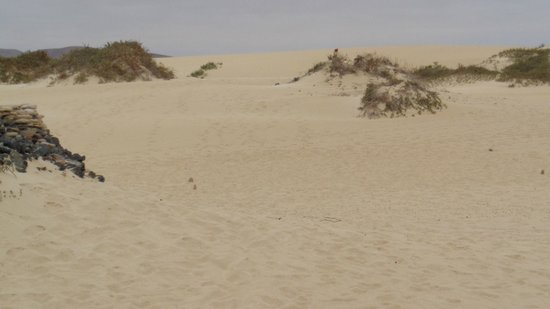 Corralejo Dunes: The Dunes 1 mile South of the Hotels