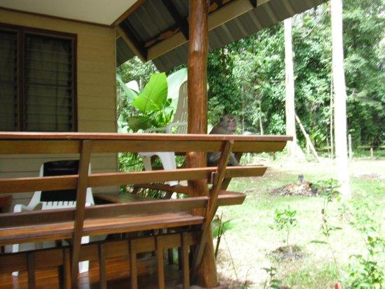 Aonang Cliff View Resort: меня встретил царь обезъян
