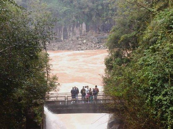 Cataratas del Iguazú: Cataratas del Iguazu