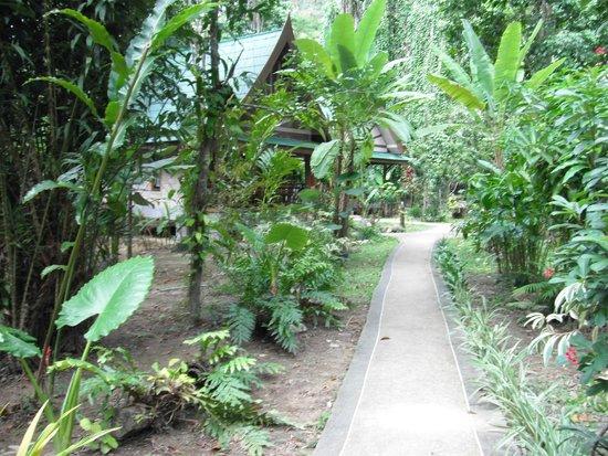 Aonang Cliff View Resort: по тихим улочкам...