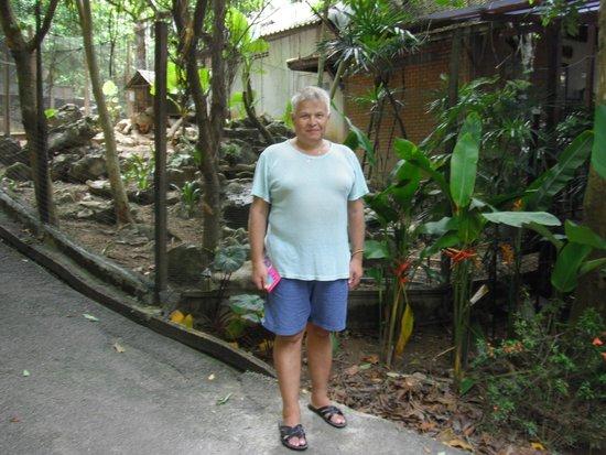 Aonang Cliff View Resort: у зоопарка