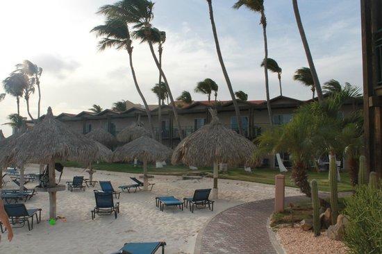 Divi Aruba All Inclusive: Beach 1