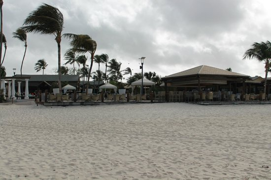 Divi Aruba All Inclusive: Beach bar