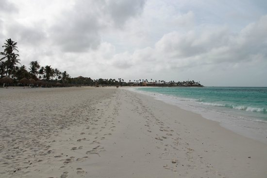 Divi Aruba All Inclusive: Beach 2