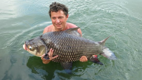 Gillhams Fishing Resorts: Fantastic Carp