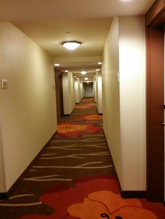 Hilton Garden Inn Salt Lake City Airport : Hallway to the room
