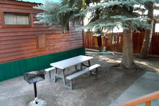 Lake View Lodge: shared side yard with bench and BBQ grill Cozy Cabin #9