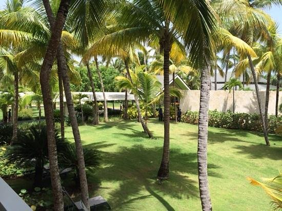 Barcelo Bavaro Beach - Adults Only: view from our 'superier' room!!!