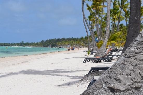 Barcelo Bavaro Beach - Adults Only: beautiful beaches, white sand and quiet.